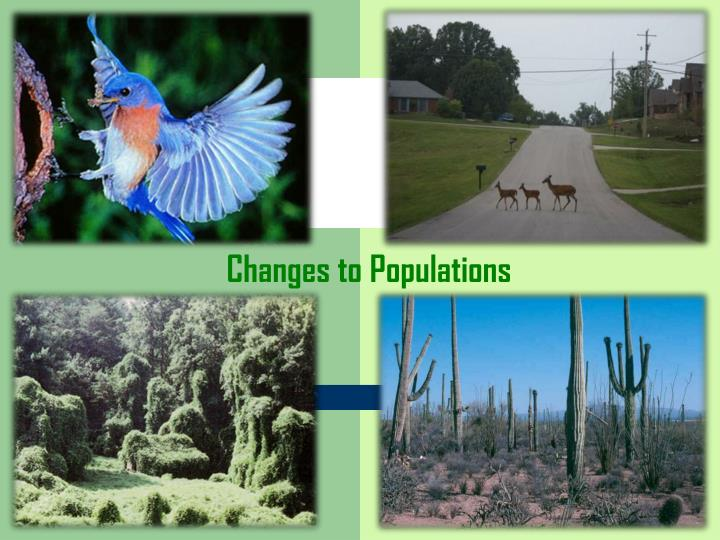 changes to populations n.