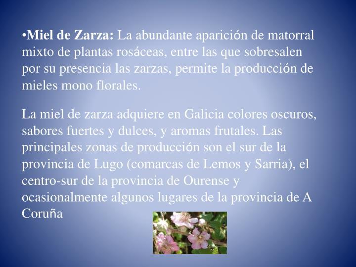 Miel de Zarza: