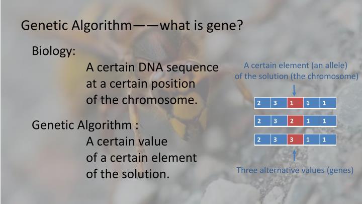 Genetic Algorithm——what is gene?