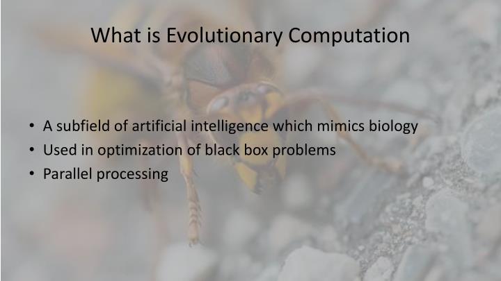 What is evolutionary computation