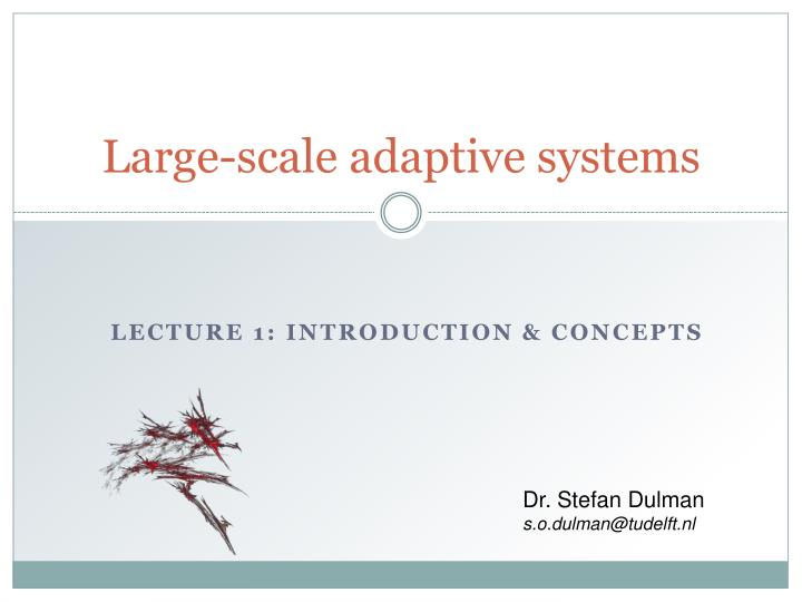 large scale adaptive systems n.