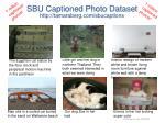 sbu captioned photo dataset http tamaraberg com sbucaptions1