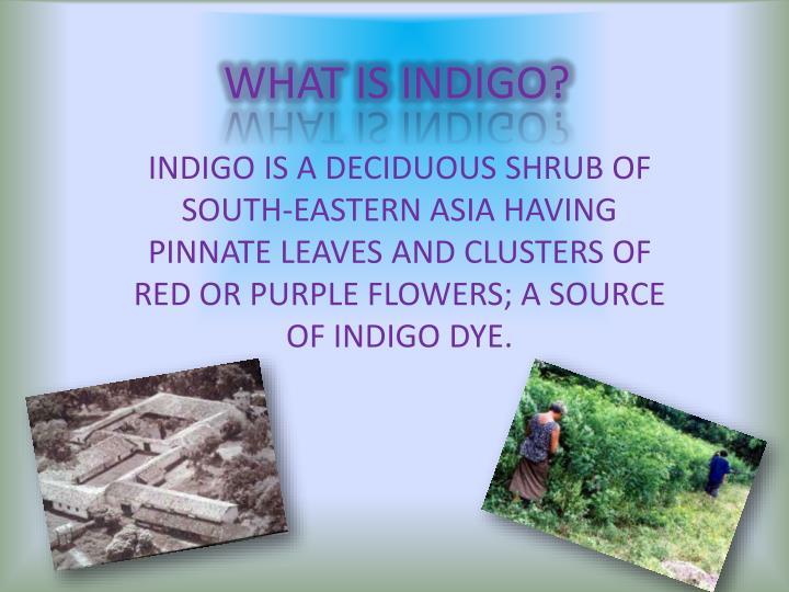 WHAT IS INDIGO?