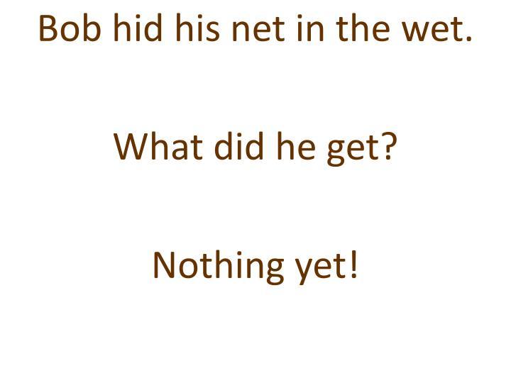 Bob hid his net in the wet.