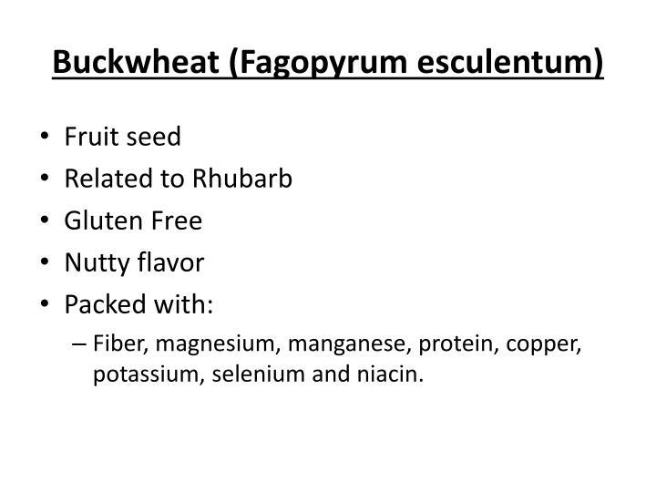 Buckwheat fagopyrum esculentum