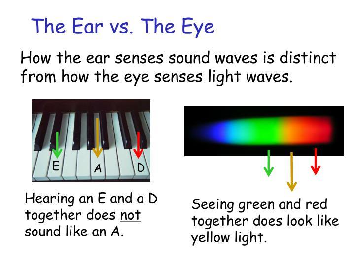The Ear vs. The Eye