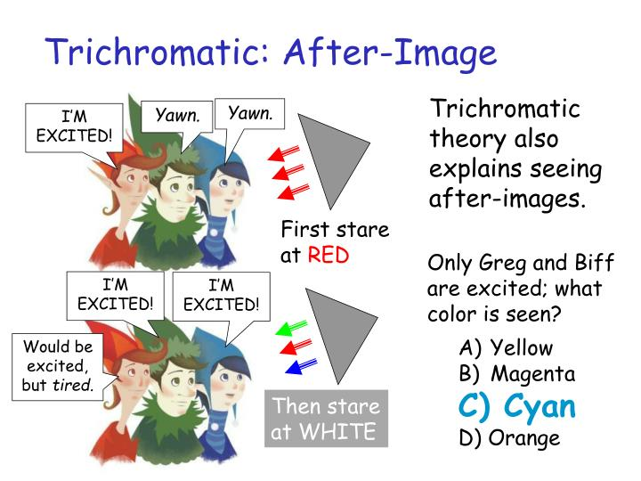 Trichromatic: After-Image