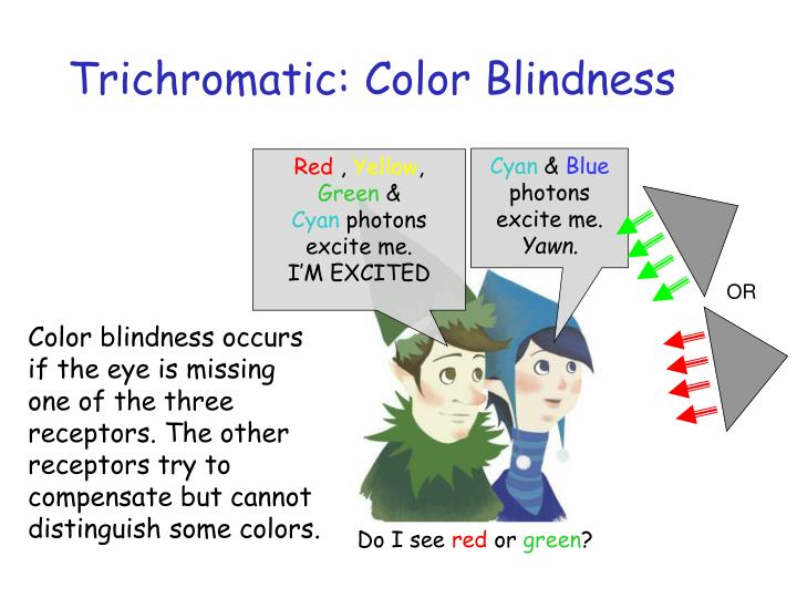 Trichromatic: Color Blindness