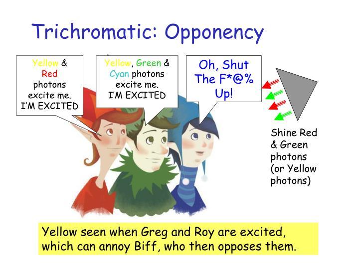 Trichromatic: Opponency