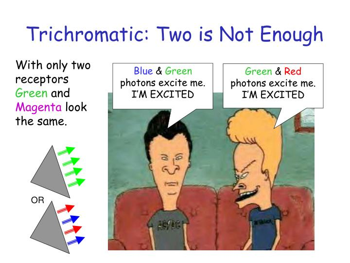 Trichromatic: Two is Not Enough