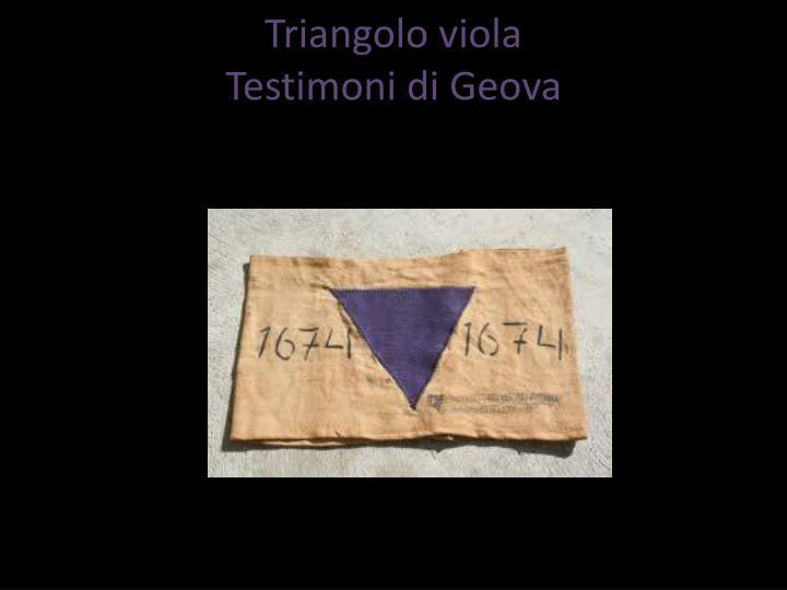 Triangolo viola