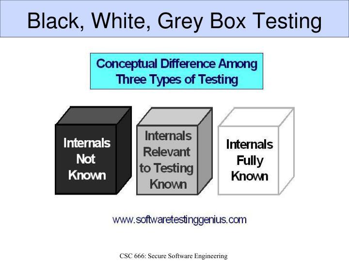 Black box penetration testing criticism