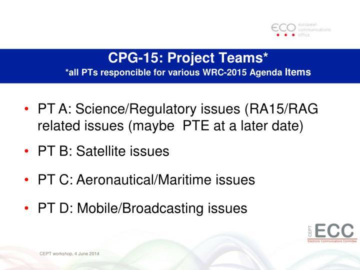 CPG-15: Project Teams*