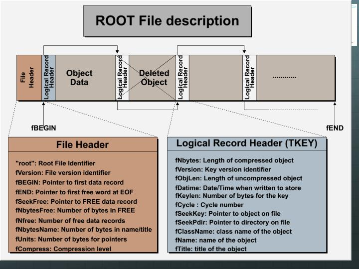 ROOT file structure
