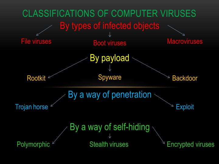 a short overview of computer viruses A computer virus is a program, script, or macro designed to cause damage, steal personal information, modify data, send e-mail, display messages, or some combination of these actions when the virus is executed, it spreads by copying itself into or over data files, programs, or boot sector of a computer's hard drive, or potentially anything else writable.