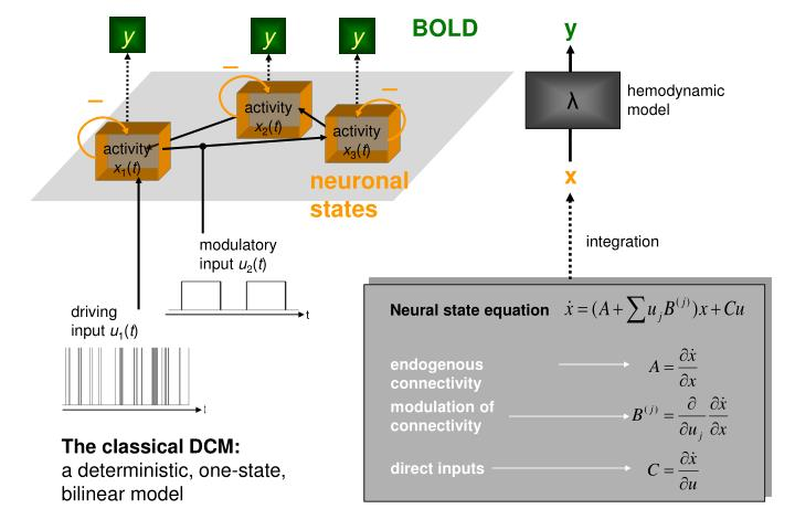 Neural state equation