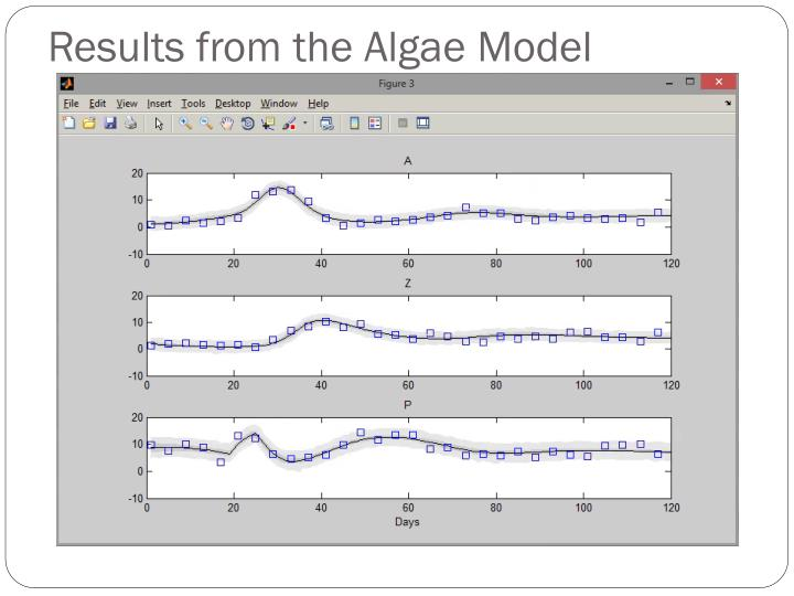 Results from the Algae Model