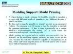 modeling support model pruning