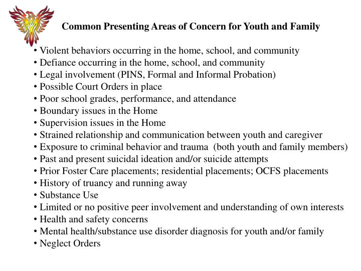Common Presenting Areas of Concern for Youth and Family