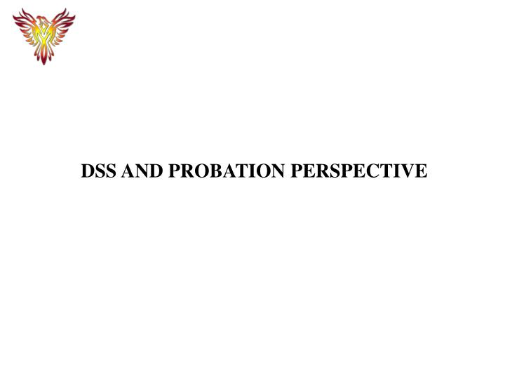 DSS AND PROBATION PERSPECTIVE