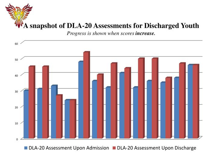 A snapshot of DLA-20 Assessments for Discharged Youth