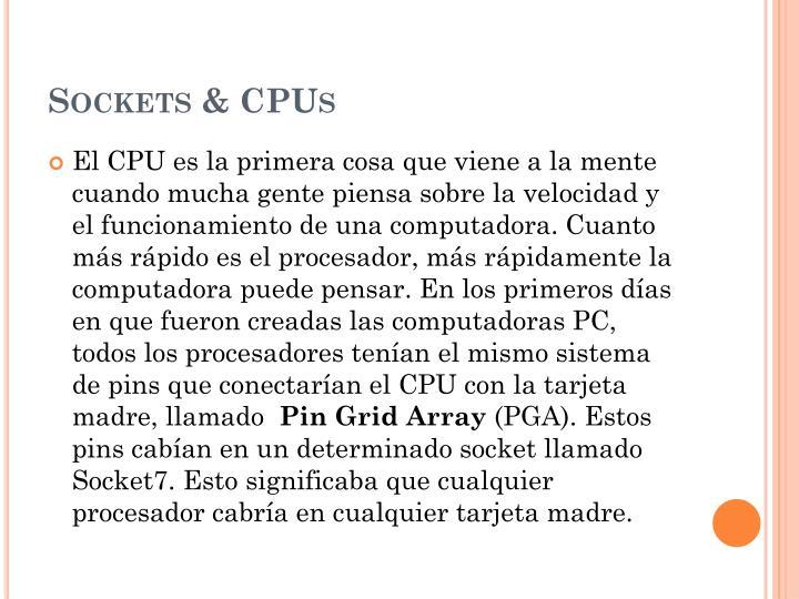 Sockets & CPUs