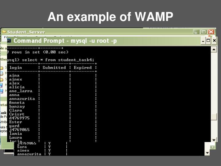 An example of WAMP