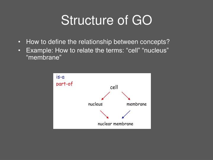 Structure of GO