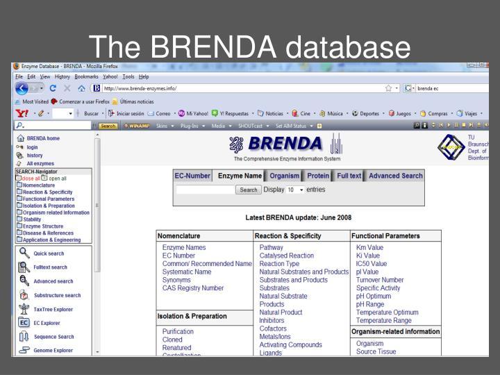 The BRENDA database