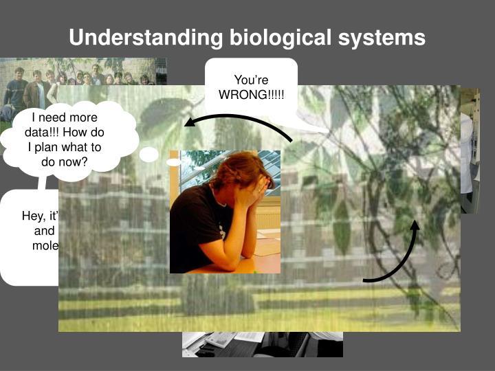 Understanding biological systems