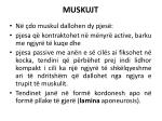 muskujt1