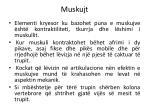 muskujt10