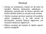 muskujt12