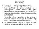 muskujt3