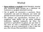 muskujt9