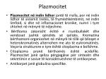 plazmocitet