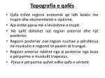 topografia e qaf s
