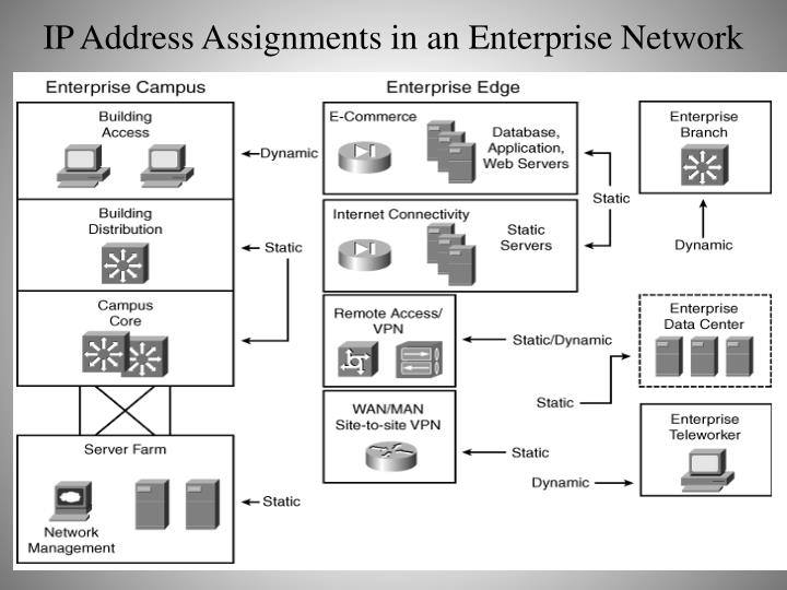 IP Address Assignments in an Enterprise Network
