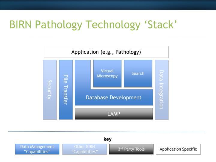 BIRN Pathology Technology 'Stack'