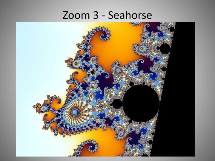 Zoom 3 - Seahorse