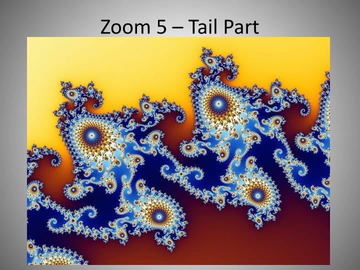 Zoom 5 – Tail Part