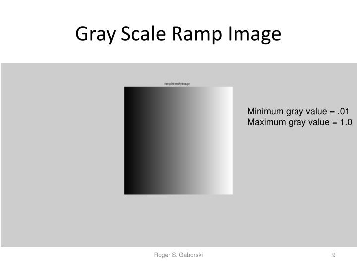 Gray Scale Ramp Image