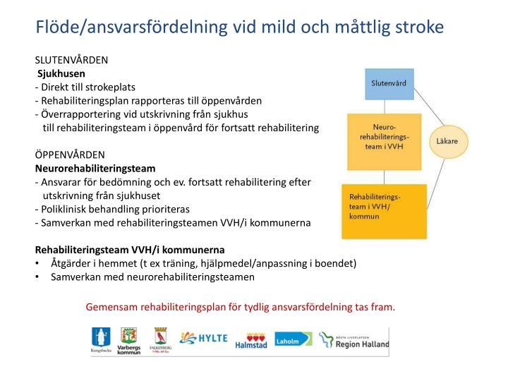 Flöde/ansvarsfördelning vid mild och måttlig stroke