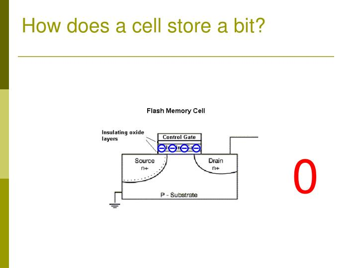 How does a cell store a bit?
