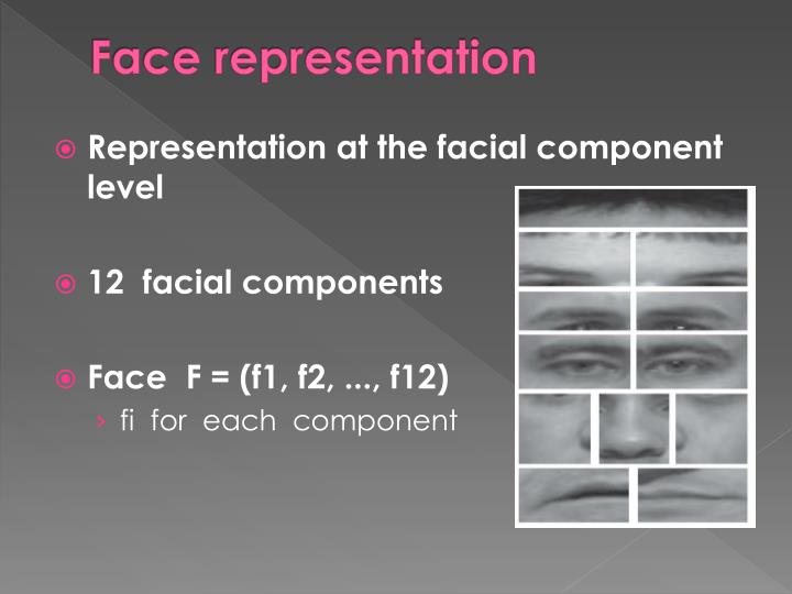 Face representation