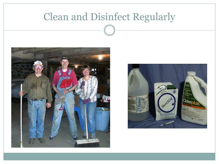 Clean and Disinfect Regularly