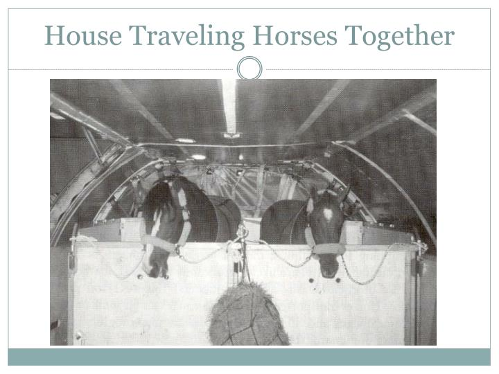 House Traveling Horses Together