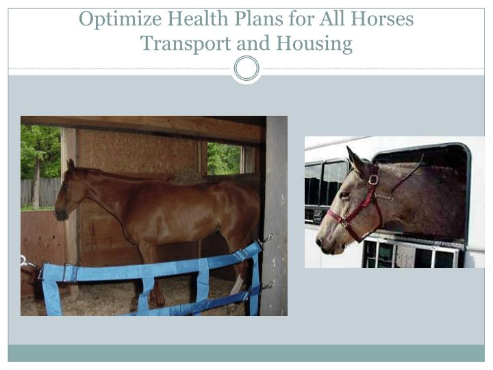 Optimize Health Plans for All Horses