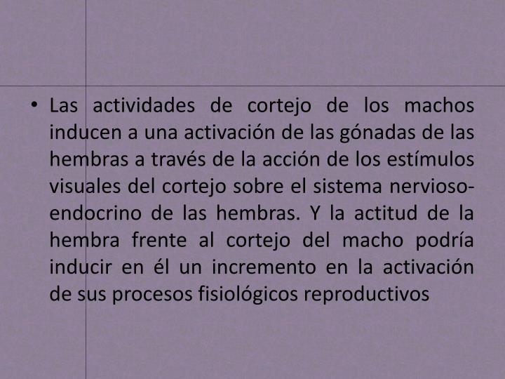 Las actividades de cortejo de los machos inducen a una activación de las gónadas de las hembras a través de la acción de los estímulos visuales