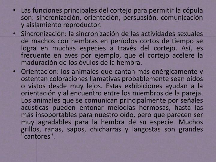 Las funciones principales del cortejo para permitir la cópula son: sincronización, orientación, persuasión, comunicación y aislamiento reproductor.